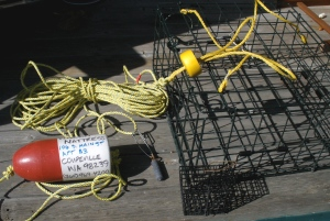 The new crabbing rig: Crab pot, lead core line, line weight, correctly adorned buoy and harness.